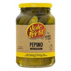 PEPINO EM CONSERVA VALE FERTIL 300G VD
